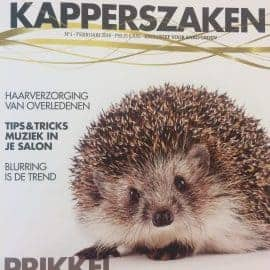 Artikel Anko Kapperszaken